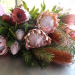 Proteas for trade through CESH