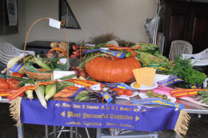 Winners and Other Entries at Moss Vale Show 2012