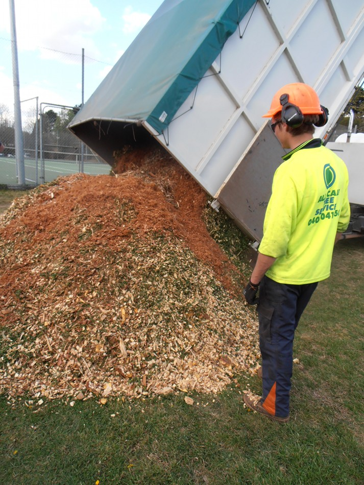 Council worker monitors the pouring of the new woodchip pile