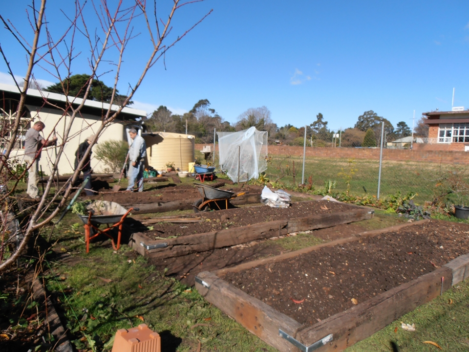 Consultations in bed? Studying the soil in the last new centre zone garden bed