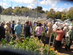 Mittagong Garden Club members check out our compost bays.