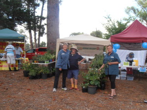 The Girls (Jill, Rosina and Joy) showing off our potted food crops