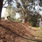 Earth bank with Leylandii removed and woodchip mulch spread