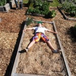 Young boy sprawled on straw of new garden bed