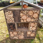Rosina's Beautiful Beneficial Insect Hotel