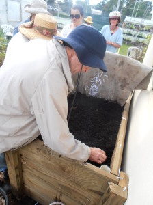 Sam filling the wicking bed with premium potting mix and compost.