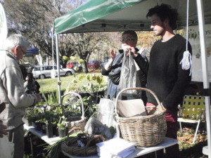 Oli and Joy chatting to local market goers.