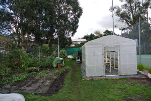 The hothouse was moved on our Barnraising Day