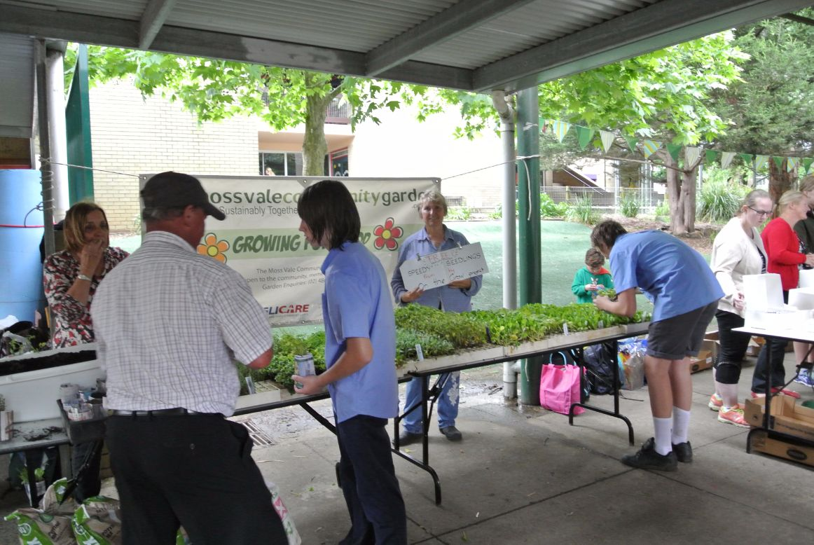 Speedy Seedlings at Moss Vale Public School Fete
